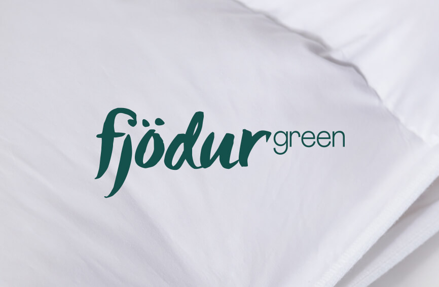 Logo Fjödur